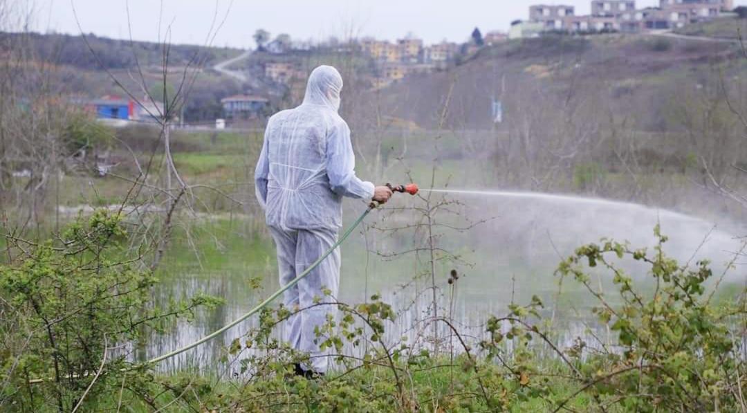 Şile Belediyesi sivrisinekle mücadeleyi hızlandırdı